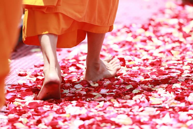 Mit Yoga zu einem erfüllten Leben gelangen